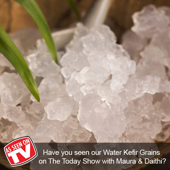 Water Kefir Live Grains